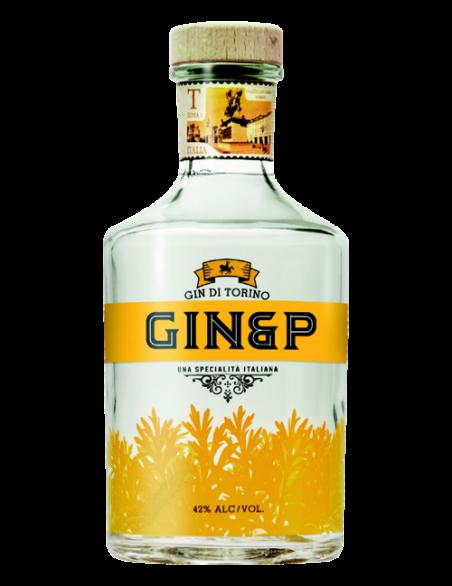Gin&P