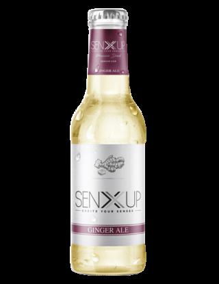 Ginger Ale Senxup