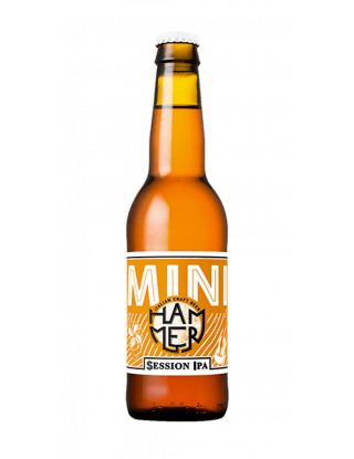 Birra Artigianale Mini -...